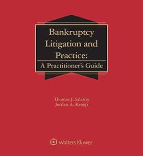 Bankruptcy Litigation and Practice: A Practitioner's Guide, Fourth Edition