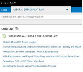 International Labor & Employment Law