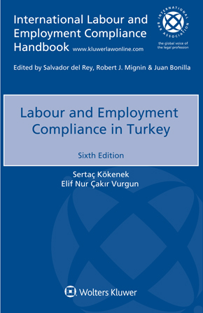 Labour and Employment Compliance in Turkey, Sixth edition by VURGUN