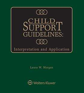 Child Support Guidelines: Interpretation and Application, Second Edition